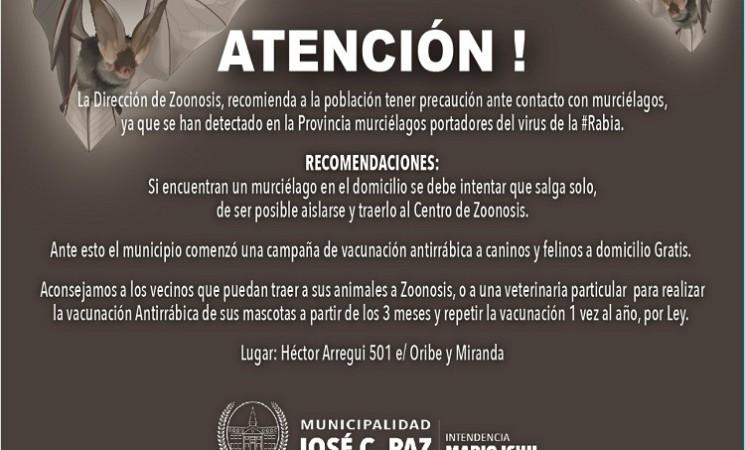 ZOONOSIS INFORMA: PREVENCIÓN ANTE CONTACTO CON MURCIÉLAGOS